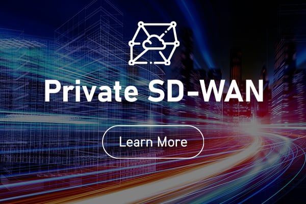 More on Private SD-WANs from Blaze