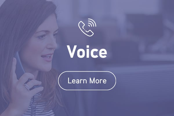 Blaze Networks' voice products and services